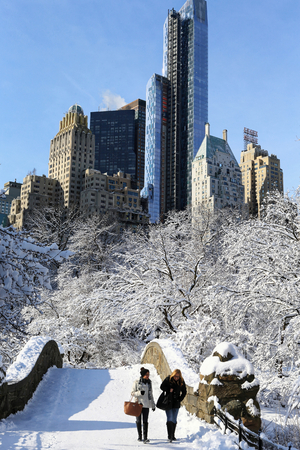 Winter Scenery in New York, Central Park Editorial