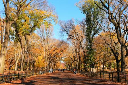 セントラル ・ パーク、ニューヨークでの秋の風景
