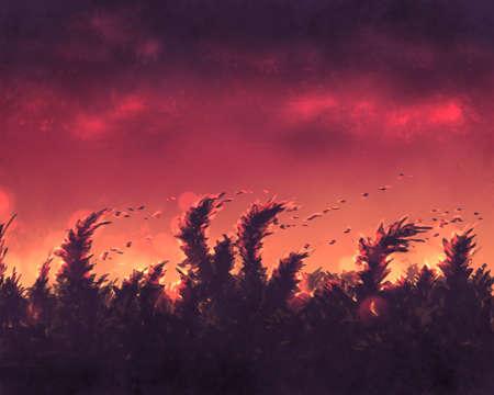 Grass at sunset digital illustration