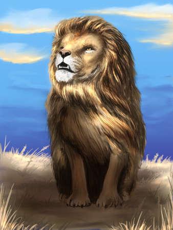 The lion digital illustration