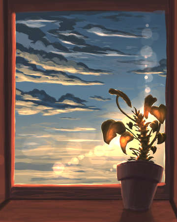 Flower on the window during sunset