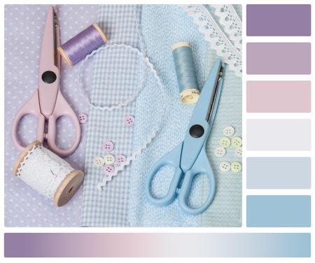 complimentary: Sewing Craft Kit. Tailoring Hobby Accessories. Palette With Complimentary Colour Swatches.