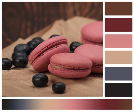 complimentary: Macaroon Biscuits, Blueberries On Paper. Wooden Table. Palette With Complimentary Colour Swatches. Stock Photo