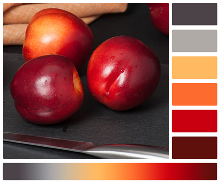 complimentary: Fresh Nectarine Fruits On Slate Stone. Natural Linen Napkin. Palette With Complimentary Colour Swatches.