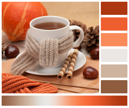 autumn colour: Autumn Concept. Cup Of Hot Tea With Sweets. Yarn Knitting. Pumpkin, Chestnuts And Pinecones. Palette With Complimentary Colour Swatches.