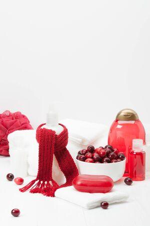 productos de aseo: Champú, jabón de barra y líquido. Artículos de higiene, Spa Kit, Toallas. Bufanda hecha a mano. Arándanos.