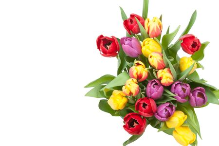 Assorted Tulips Bouquet. Isolated On White Background. Top View.