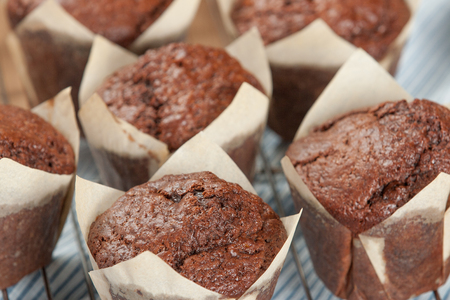 Homebaked Chocolate Muffins In Paper Cases