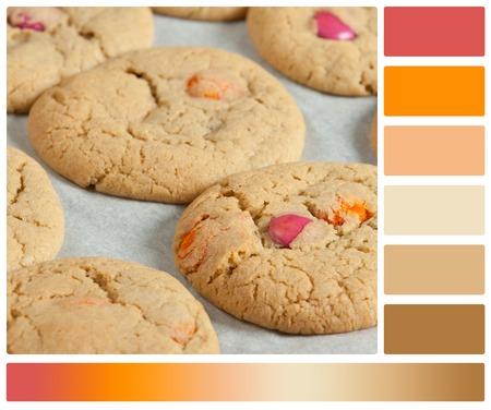 paletas de caramelo: Homebaked masticables mantequilla Galletas con los dulces de chocolate de colores. Con la paleta Muestras de color a disposición