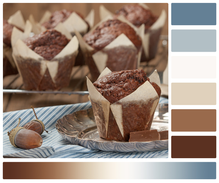 Homebaked Chocolate Muffins In Paper Cases. Palette With Complimentary Color Swatches Stock Photo