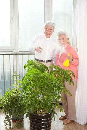 An old couple are watering the plants high quality photo
