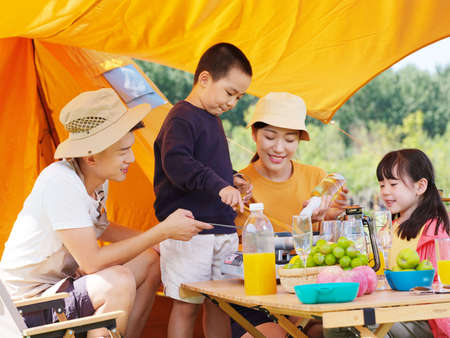 A happy family of four having a picnic outdoors high quality photo Banque d'images