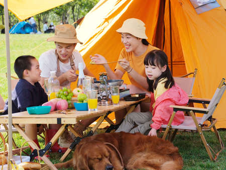 Happy family of four and pet dog have a picnic outdoors high quality photo