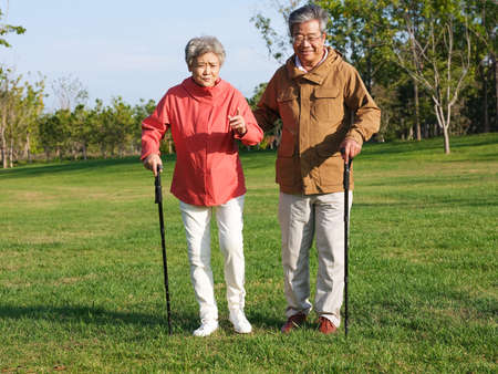 Happy old couple walking in the park high quality photo