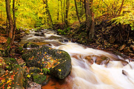 derives: The Harz is the highest mountain range in Northern Germany and its rugged terrain extends across parts of Lower Saxony, Saxony-Anhalt, and Thuringia. The name Harz derives from the Middle High German word Hardt or Hart (mountain forest)