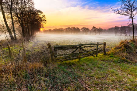 Sunrise over a meadow near Wiesmoor 版權商用圖片