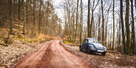 An old Beetle parking in a forest near Trippstadt Stock Photo