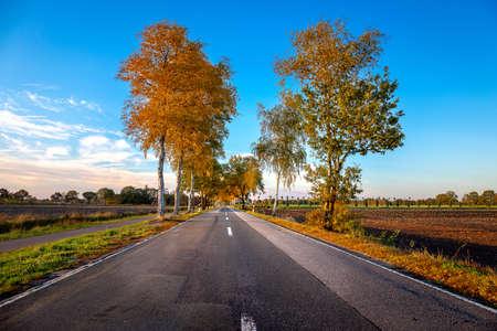 The Halsbeker Road near Westerstede 版權商用圖片