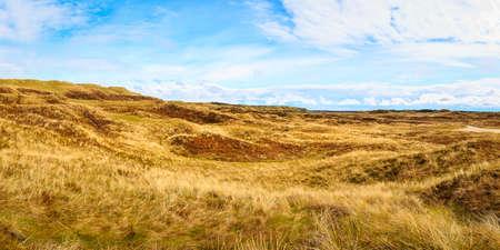 The Bulbjerg in the region northern Jutland near the national Park Thy 版權商用圖片