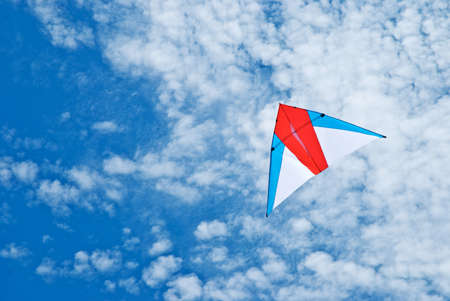Kite flying under the sky