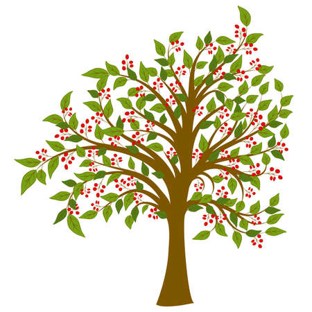 Full of red fruit of the tree node Illustration