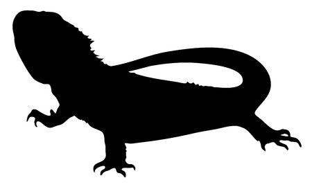 Vector graphic silhouette of a bearded dragon.