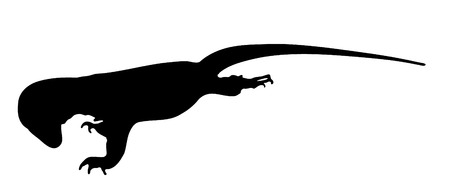 Vector graphic outline of an Indonesian water monitor.