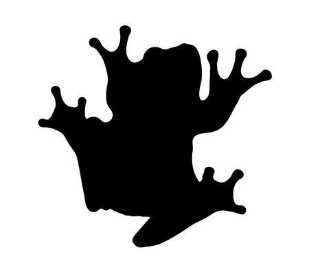 Vector graphic outline of a white lipped tree frog. Vector
