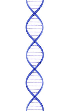 Closeup strand of DNA made from a glass material on a white background  photo