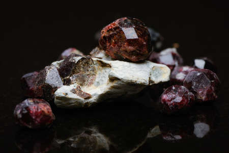 Closeup of uncut garnets with several in matrix on a dark reflective background.