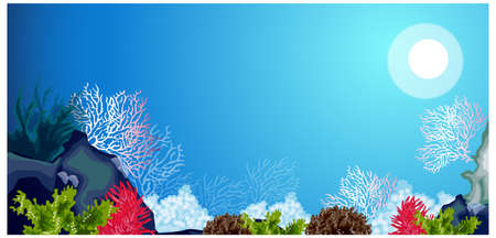 This illustration is a common natural landscape. Underwater carols and weeds Stock Vector - 15881534