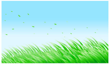 This illustration is a common natural landscape. green grass against blue sky Stock Vector - 15879735