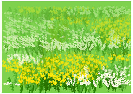 This illustration is a common natural landscape. Flower bed Stock Vector - 15901723