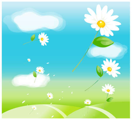 This illustration is a common natural landscape. Daisy flowers in air Stock Vector - 15881818