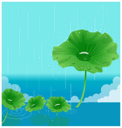 This illustration is a common natural landscape. waterdrop on leaves Vector