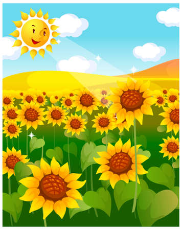 This illustration is a common natural landscape. sunflower field and sun Stock Vector - 15901637