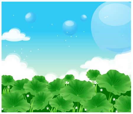 This illustration depicts a young childs dream world. Close-up of lotus leaves Vector