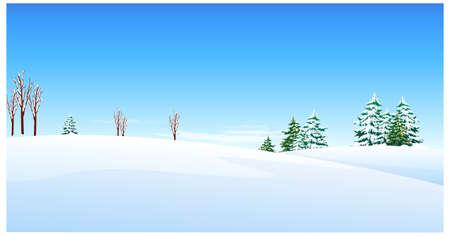 coberto de neve: Esta ilustra��o � a natureza geral da paisagem de inverno. Abeto sobre paisagem de neve Ilustra��o