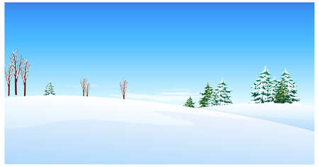 this illustration is the general nature of the winter landscape. Fir trees over snow landscape Vector