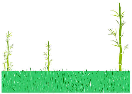 This illustration is a common cityscape. Grass field with plants Stock Vector - 15902049