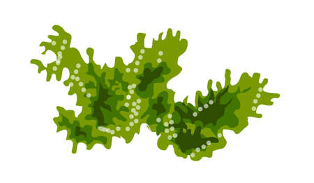 weed: icon sea weed