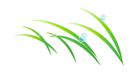 dewdrops: icon leaf Illustration