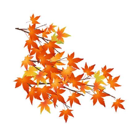 icon leaf Stock Vector - 15996542