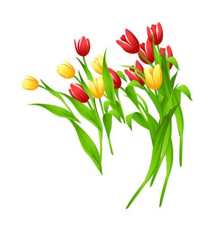 olanda: icona di tulipano Vettoriali