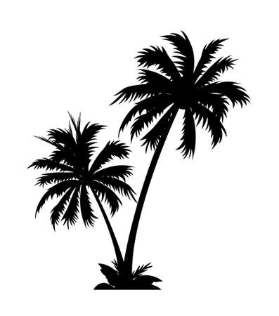 icon palm tree