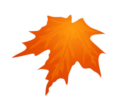 icon leaf Stock Vector - 15919959