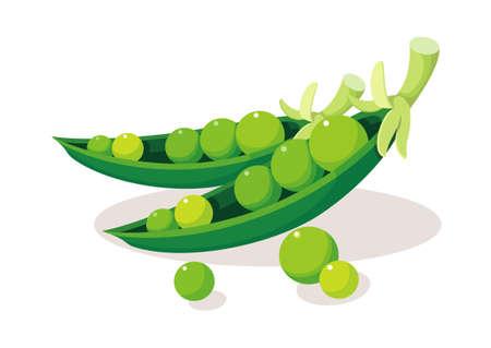 icon bean