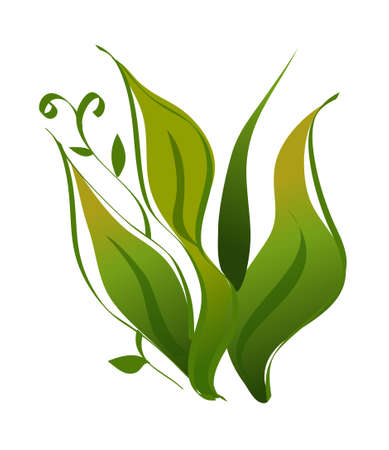 icon leaf Stock Vector - 15991403