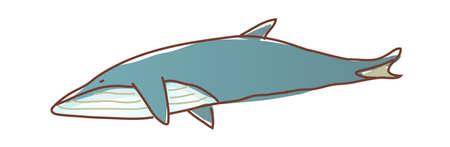 ballena azul: Icono ballena azul