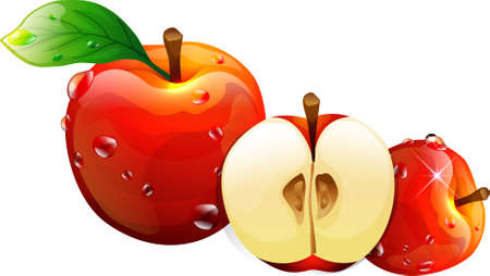 dewdrops: The view of apples Illustration